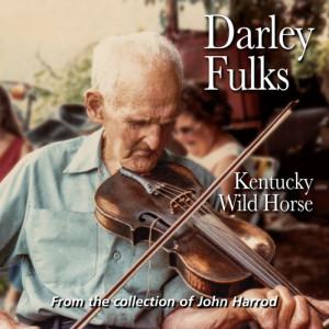 Darley Fulks - Kentucky Wild Horse